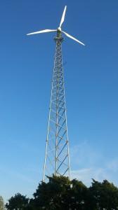 Kor och Vindkraftverk 046